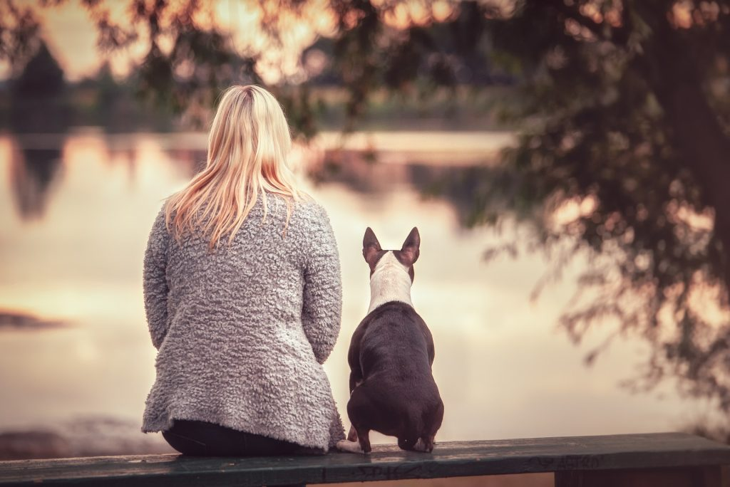 single wanderurlaub mit hund