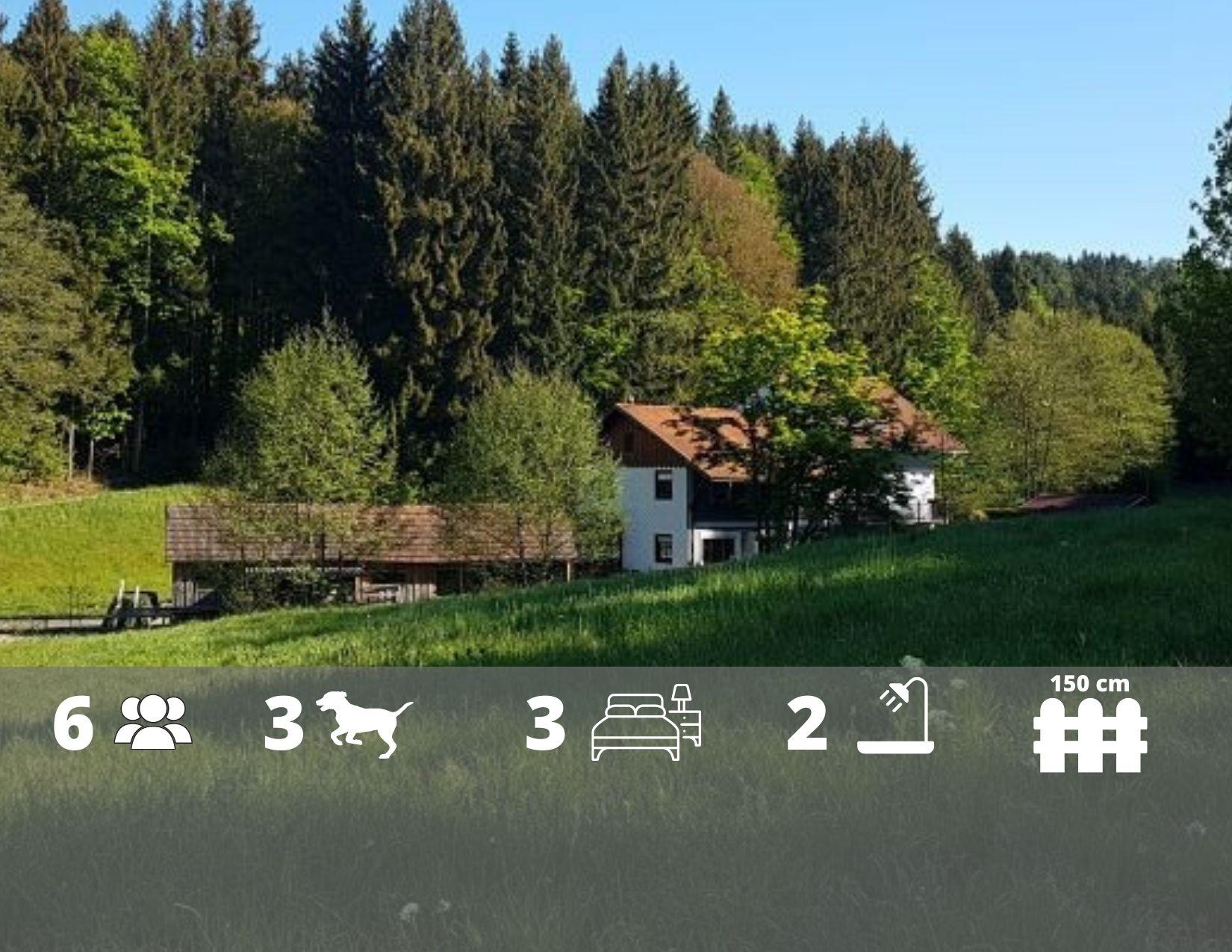 Ferienhaus Sacherl mitten im Wald, WLAN, Garten, Swimmingpool
